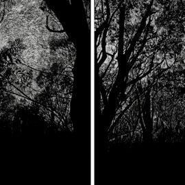 Impresión glyceé/serigrafía 2 paneles. 165×60 cm.